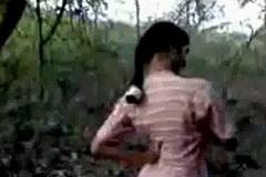 Indian waxen battle-axe bonking alongside forest