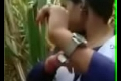 लड़का लड़की गने की खेत में बातें करते करते चोदाइ करने लगे